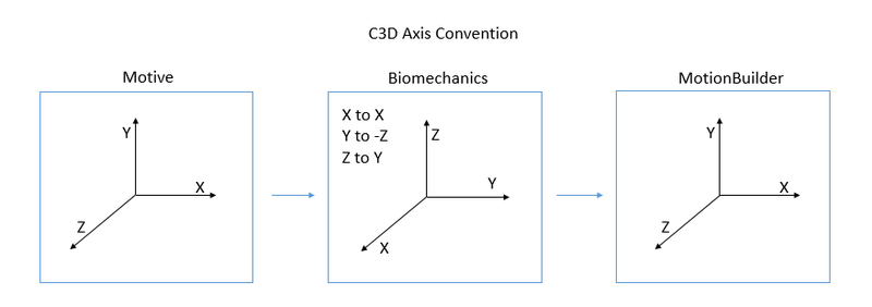 C3D Axis.png